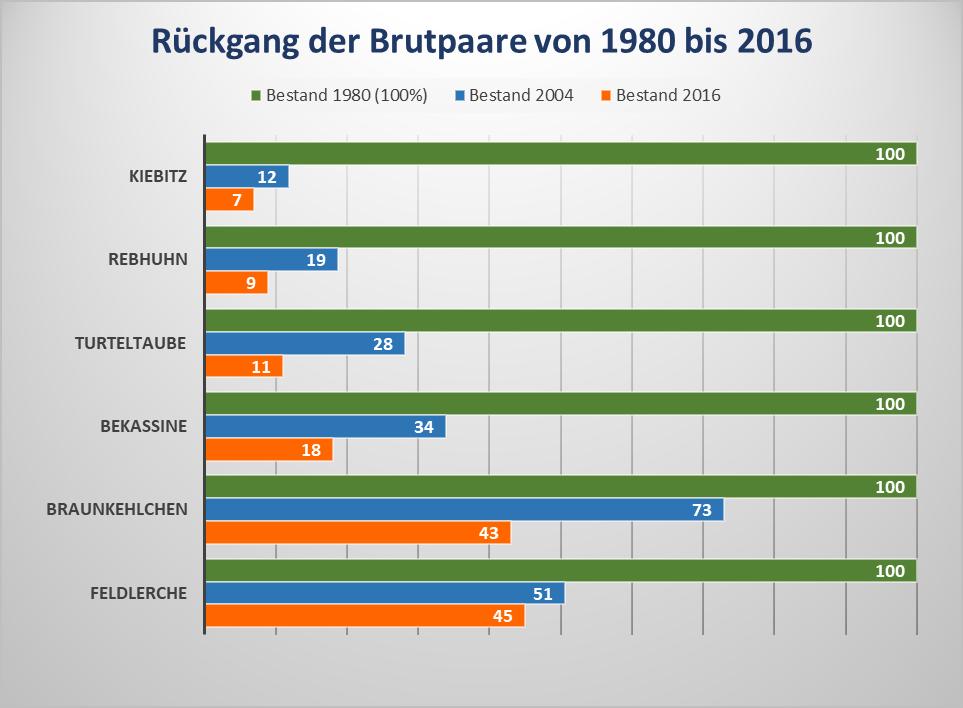 Zeigt den Rückgang der Brutpaare von 1980 bis 2016 als Balkendiagramm